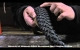 Embedded thumbnail for DIY How to Make Your Own Mountain Bike Tire with Studs for Winter Ice and Snow